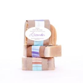 web-soap-Roxanne-2013-300x300